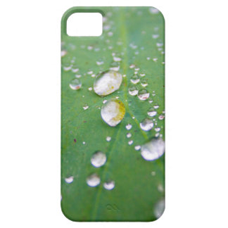 Dew Drops iPhone 5 Covers