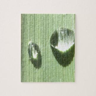 Dew Drops Jigsaw Puzzle