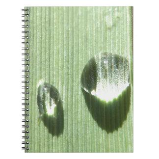 Dew Drops Notebook