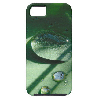 Dew Drops On A Tulip Leaf Case For The iPhone 5