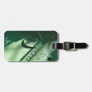 Dew Drops On A Tulip Leaf Luggage Tag