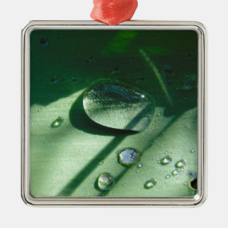 Dew Drops On A Tulip Leaf Silver-Colored Square Ornament