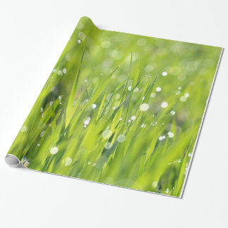 Dew Drops on Grass Wrapping Paper
