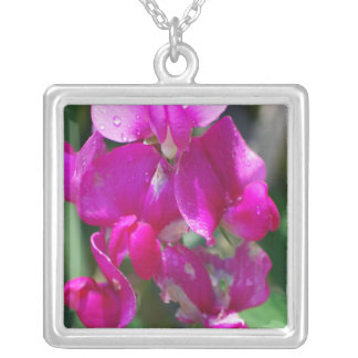Dew Drops on Sweet Pea Silver Plated Necklace