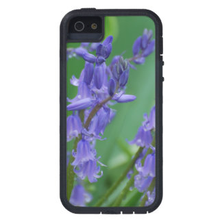 Dew on Bell Flowers iPhone 5 Covers