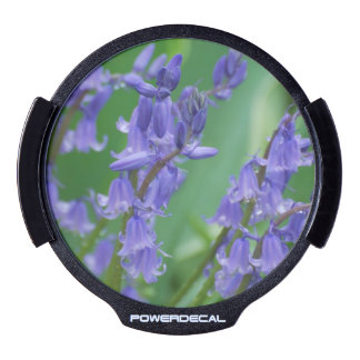 Dew on Bell Flowers LED Window Decal