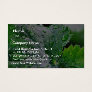 Dew Water Droplets Drops Business Card