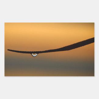 Dewdrop at sunrise sticker
