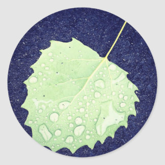 Dewy Leaf Classic Round Sticker-3 in. (sheet of 6) Classic Round Sticker