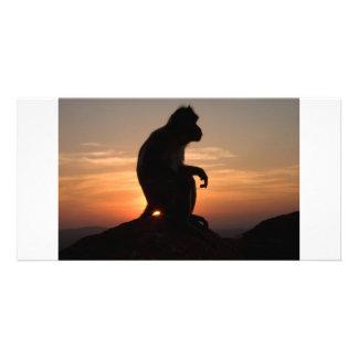 DFelkin-photoart-1328 Card