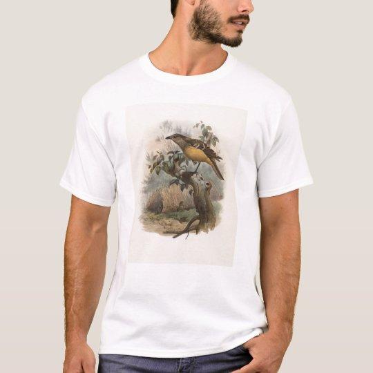 DG Elliot - Chlamydodera cervineiventris T-Shirt