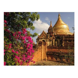 Dhamma Yazaka Pagoda at Bagan (Pagan), Myanmar Postcard