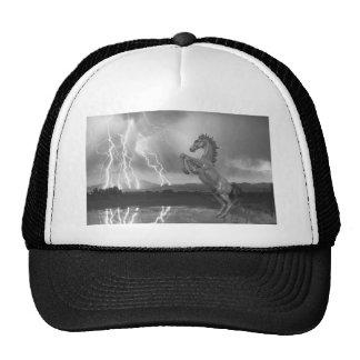DIA Mustang Bronco Lightning Storm BW Trucker Hat