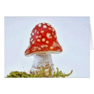 Diagram - map fresh fly mushroom card