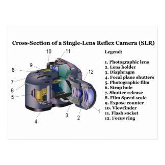 Diagram of a Single Lens Reflex Camera SLR Postcard
