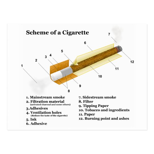 Diagram of a Tobacco Cigarette Smoking Postcard