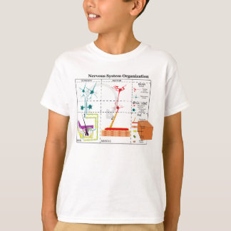 Diagram of Basic Nervous System Functions T-Shirt