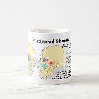 Diagram of Human Paranasal Sinuses Coffee Mug