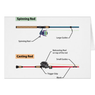 Diagram of spinning rod and baitcasting rod vector card