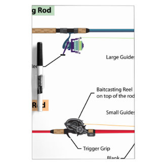 Diagram of spinning rod and baitcasting rod vector dry erase board