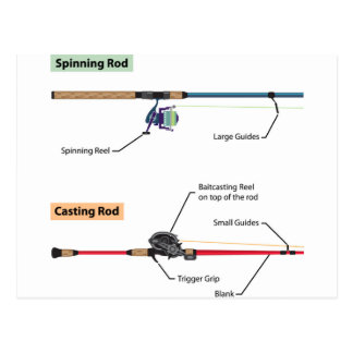 Diagram of spinning rod and baitcasting rod vector postcard