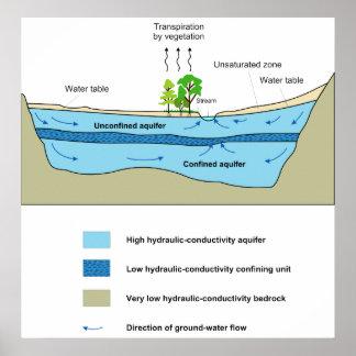 Diagram of the Aquatic Activity in an Aquifer Print