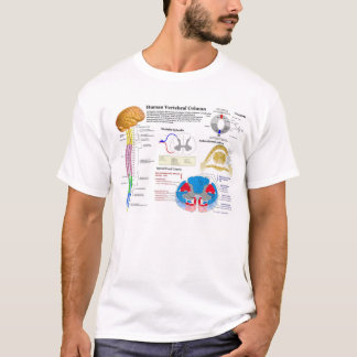 Diagram of the Human Vertebral Column T-Shirt