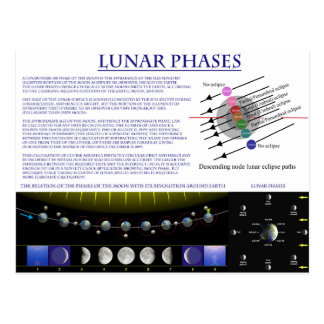 Diagram of the Lunar Phases of Earth's Moon Postcard