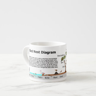 Diagram of Various Bird Nests Espresso Mug
