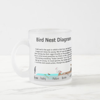 Diagram of Various Bird Nests 10 Oz Frosted Glass Coffee Mug