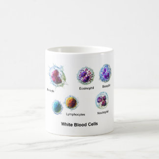 Diagram of White Blood Cells Leukocytes Coffee Mug