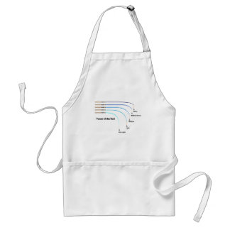 Diagram power of the fishing rod characteristics standard apron