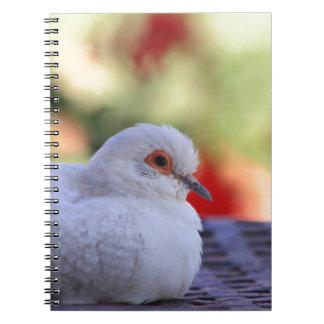 Diamond Dove Bird journal Notebooks