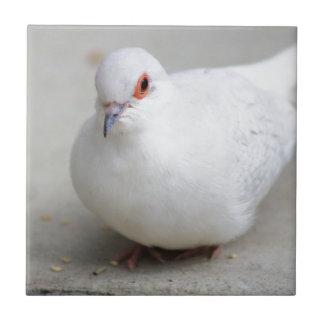 Diamond Dove bird tile