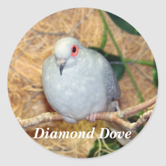DIAMOND DOVE ROUND STICKER