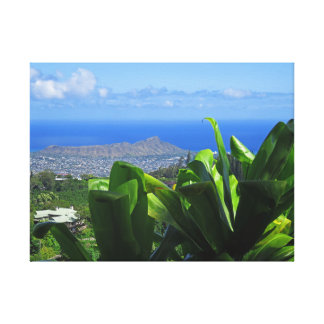 Diamond Head with Ti Leaves Canvas Print