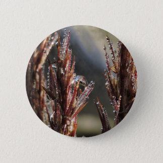 Diamond trees 2 inch round button