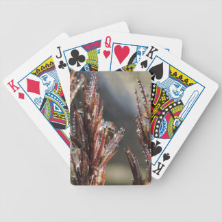 Diamond trees bicycle playing cards