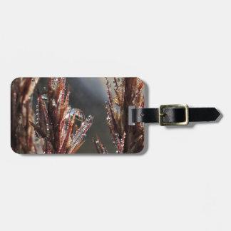 Diamond trees luggage tag