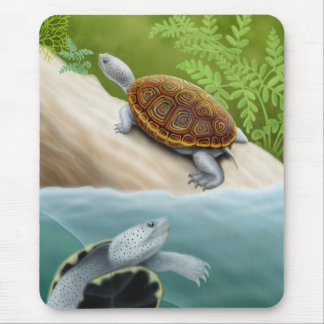 Diamondback Terrapin Turtles Mousepad