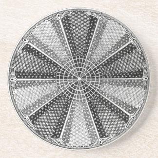 Diatom 13 Ernst Haeckel Fine Art Coaster