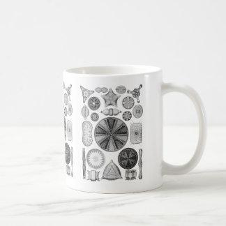Diatoms Coffee Mug