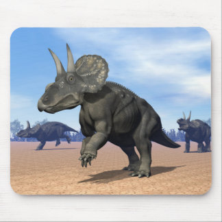 Diceratops/nedoceratops dinosaurs in the desert mouse pad