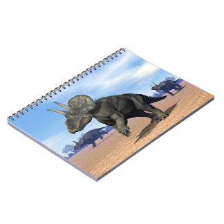 Diceratops/nedoceratops dinosaurs in the desert notebook