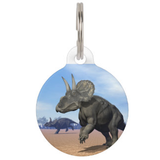 Diceratops/nedoceratops dinosaurs in the desert pet name tag
