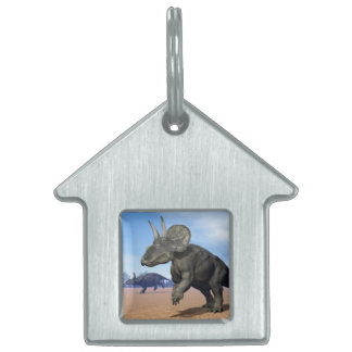 Diceratops/nedoceratops dinosaurs in the desert pet tag