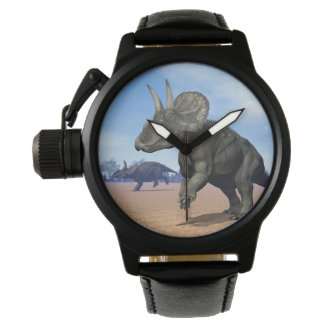 Diceratops/nedoceratops dinosaurs in the desert watches