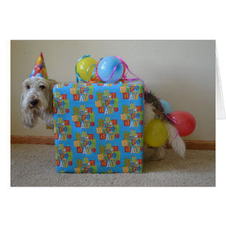 Did someone order a birthday gift? card