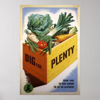 Dig For Plenty - Fruit and Veg Poster