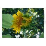 Digital Art Sunflower Opening in Light Stationery Note Card